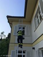 Likvidace bodavého hmyzu ulice V Horce