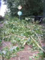 Prasklé a spadlé větve Na Vírku
