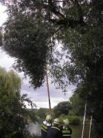 Padlé větve cyklostezka Na Vírku