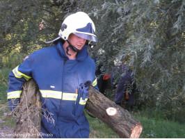 Likvidace prasklého stromu Na Drahách