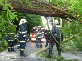 Spadlý strom přes komunikaci Karštejnská