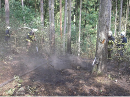 Požár lesa pod skládkou na Vráži