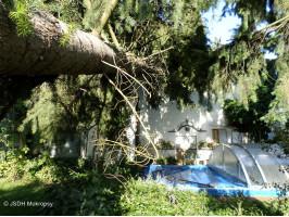 Likvidace následků bouře a nárazového větru